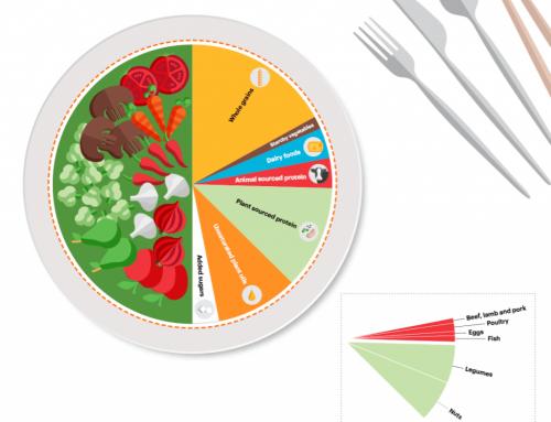 Flexitarisch essen heißt großteils Pflanzenkost